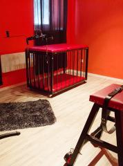 Red Room - BDSM
